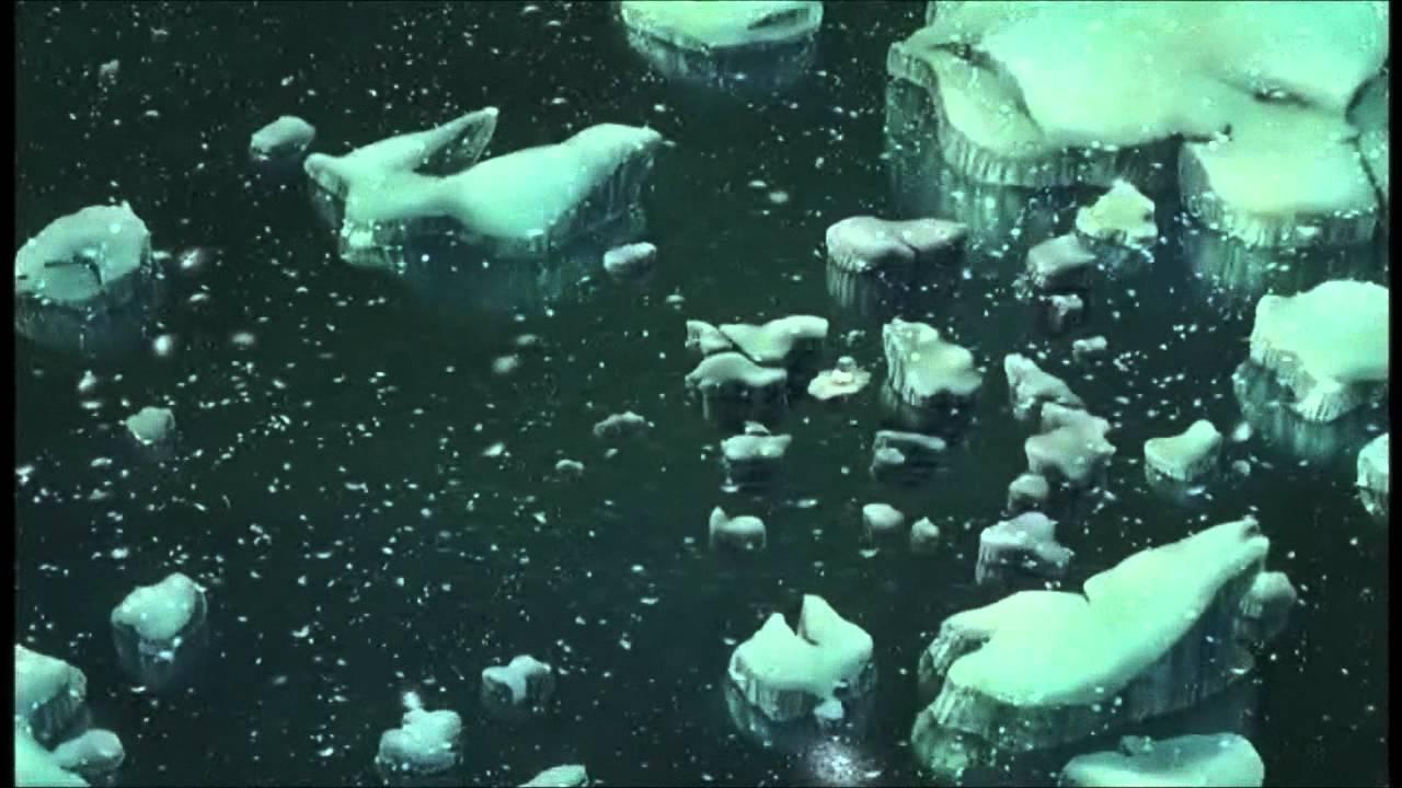 the little polar bear - winter light