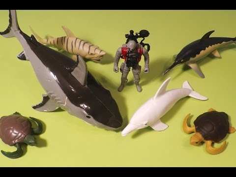 Ocean World Toys: Sharks, Dolphins, Turtles