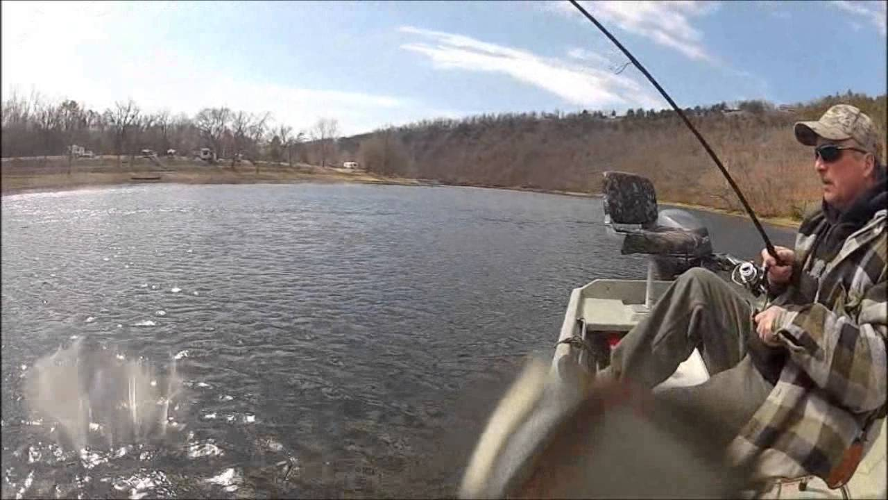 Fishing the white river for trout bull shoals lake boat for Bull shoals fishing report