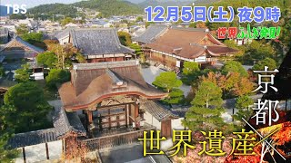 世界ふしぎ発見!京都の本物にふれる旅!1泊100万円の高級宿坊に迫る!!🈖🈑