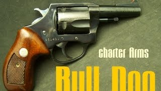 Charter Arms Bull Dog 44 Special Revolver