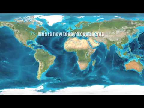 100 Миллионов Земных Лет