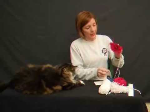 Carolyn Braden's TOIE: How to make Pom-Poms! Video