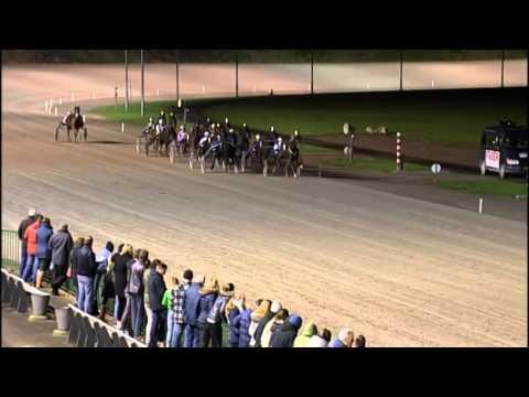 Vidéo de la course PMU PRIX ANKIE REDDER