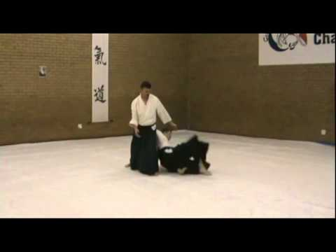 Aikido Training in Centurion South Africa.avi Image 1