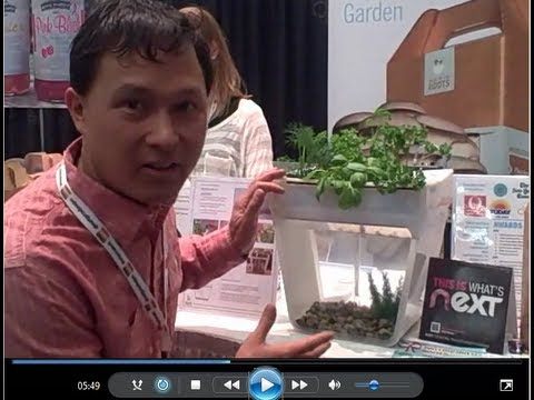 $60 Home Aquaponics System Grows Food on Your Desk