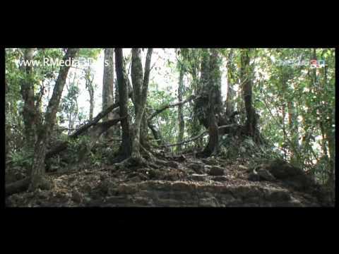 Cenotes. El inframundo de Xibalbá. Parte 1 de 2