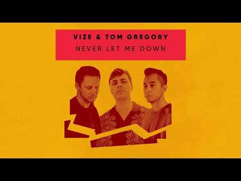 VIZE & Tom Gregory - Never Let Me Down (Visualizer) [Ultra Music]