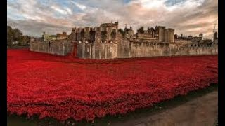 "Poem:~ ""In Flanders Field"" by John McCrea ~Tower of London"