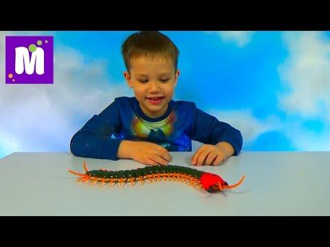 Гигантская сороконожка на инфракрасном управлении распаковка игрушки giant toy Scolopendra