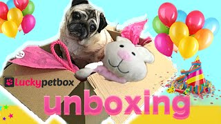 Mia Mops I unboxing I luckypetbox