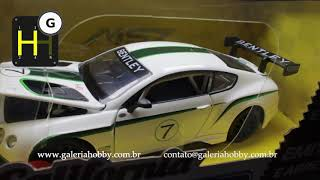 Bentley Continental GT3 N 07 California Action 1/24