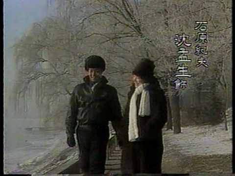1990 台視 隨風而逝 沈孟生 陳冲 魯振順 唐娜 曹建 沈雪珍