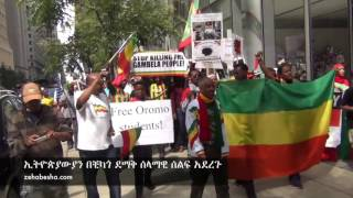Ethiopians in Chigaco Show Solidarity for Oromo & Amhara Protests