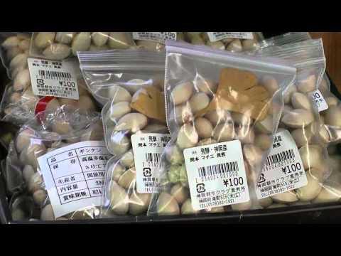 飛騨市 「道の駅 宙ドーム・神岡」 ~朝とれ野菜直売所~