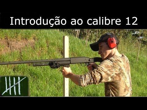 Introdução ao calibre 12