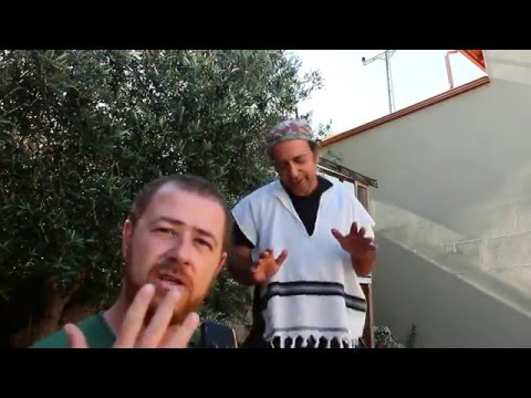 שמעון ולוי - נפגשים בבארבי