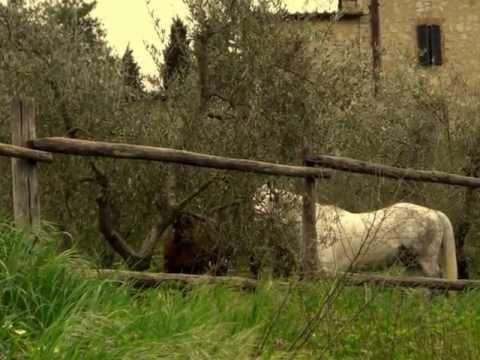 Biahi umey ed buwan / Igorot song / Fonterutoli Chianti Tuscany Italy