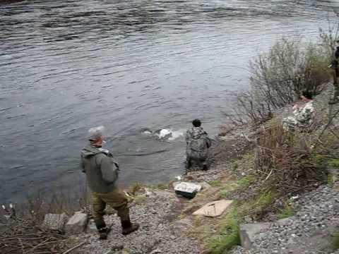 рыбалка на реке молочная