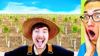 I Reacted To MrBeast Planting 20,000,000 Trees #TeamTrees