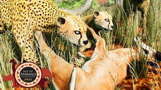 Age Of Animals - Caçada Em ALTA Velocidade, Cheetah e Gazella! | (#2) (PT-BR)