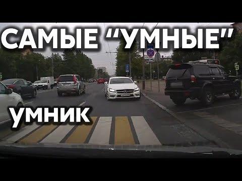 """Подборка САМЫХ """"УМНЫХ"""" водителей #259"""