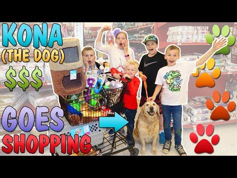 Buy Everything Our Dog Touches at the Pet Store Challenge *NO BUDGET*