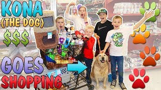 Buy Everything Our Dog Touches at the Pet Store Challenge