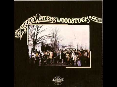 Muddy Waters- Why Are People Like That.wmv