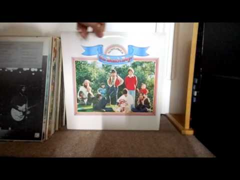 My Beach Boys Vinyl LP Collection (UK)