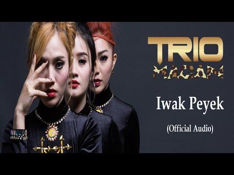 Trio Macan - Iwak Peyek (Official Audio)