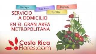 Costa Rica Flores - entrega de flores a domicilio San José Costa Rica