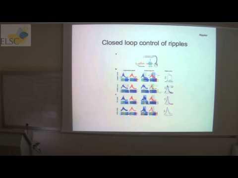 ELSC Seminar: Eran Stark