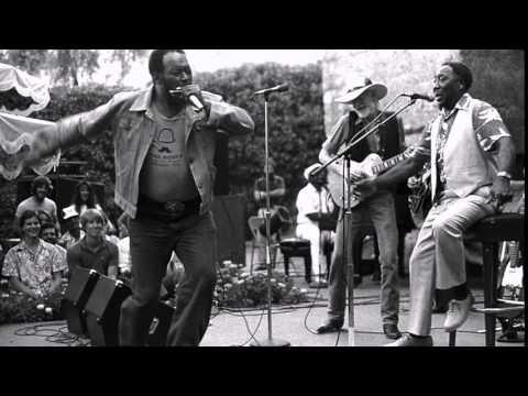 Muddy Waters  ~  ''Electric Mud'' ( album )  1968 Part 1