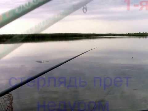 рыбалка в воднике саратов
