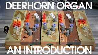 Ciat-Lonbarde Deerhorn Organ - An Introduction