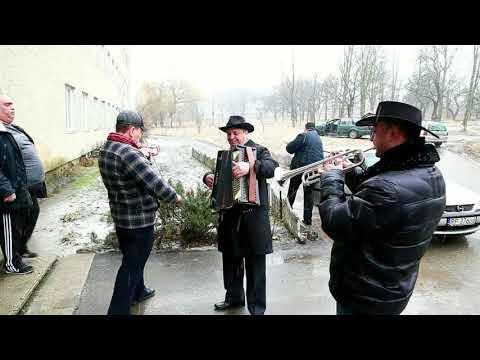 Глиницькі музиканти в Кіцманському пологовому відділенні! 08.02.2018. #dimonproduction