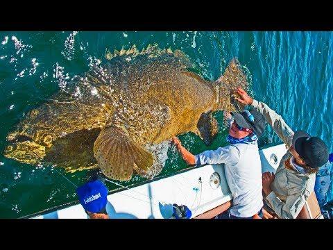 ТАКОЙ УЛЁТНОЙ РЫБАЛКИ ТЫ ЕЩЕ НЕ ВИДЕЛ#9 Вот это приколы на рыбалке 2018 Ты не поверишь