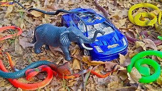 Toys for Kids Car Snakes Elephant Story for kids animation cartoon video for kids Shivay Childhood