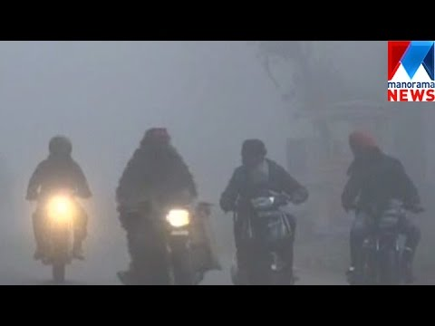 Smog in  Delhi : 3 killed in accident  | Manorama News