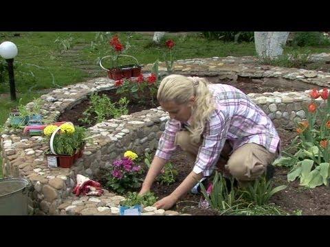 Цветник в палисаднике (фото) своими руками – растения и оформление
