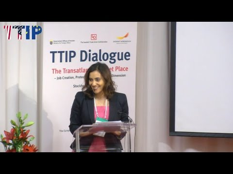 TTIP Dialogue - Concerns of Critics