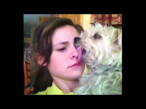 [Funny Videos -) (Compilation 2016)] Video