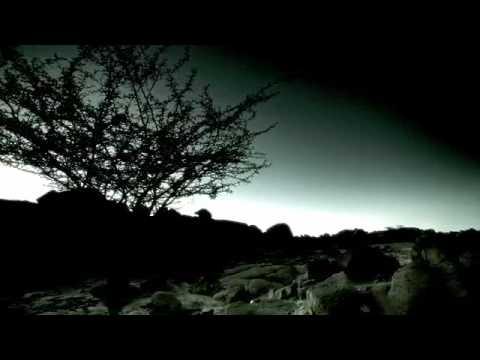 Rene Sandoval - Hypnotic Bass (Cosmo records)