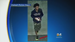 Search On For Men Who Ambushed, Carjacked Hard Working Mother