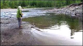 Рыбалка (улов за несколько секунд) - Fishing ( fast catch )