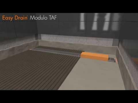 Modulo TAF (en)