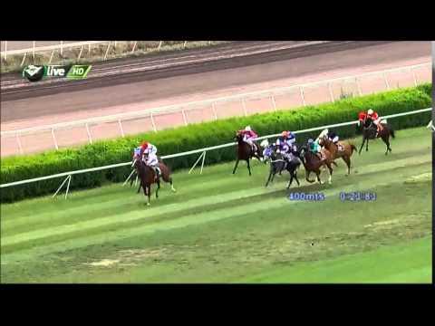 Vidéo de la course PMU PREMIO DIORISSIMA