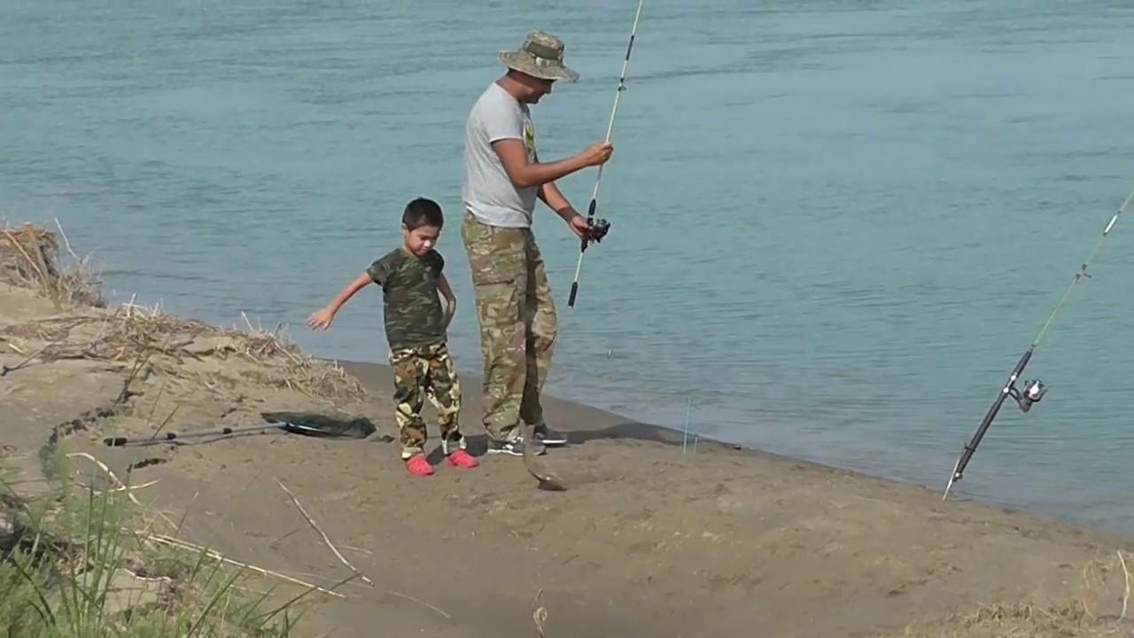 ловля рыбы на сырдарье