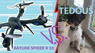 RAYLINE SPIDER R10